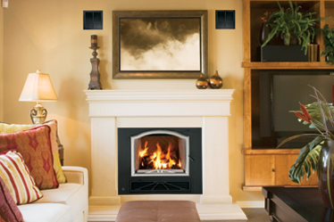 BIS High Efficiency EPA Wood Burning Fireplaces