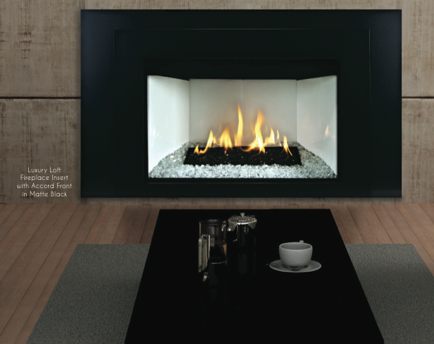 Loft Luxury Contemporary Direct Vent Fireplace Insert