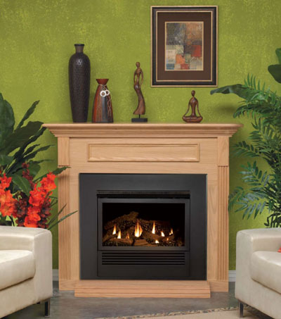 High efficient fireplace system mantis fireplace and mantel kits teraionfo